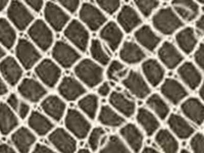 Cheap netting